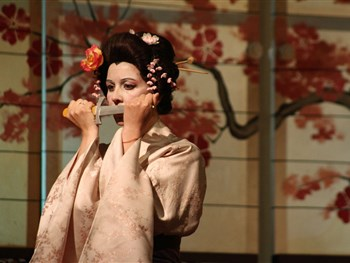 Madam Butterfly - On Sale Now!